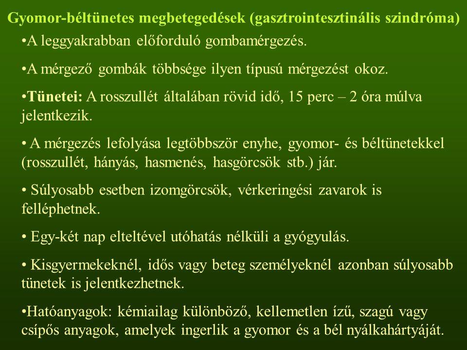 Gyomor-béltünetes megbetegedések (gasztrointesztinális szindróma) A leggyakrabban előforduló gombamérgezés. A mérgező gombák többsége ilyen típusú mér