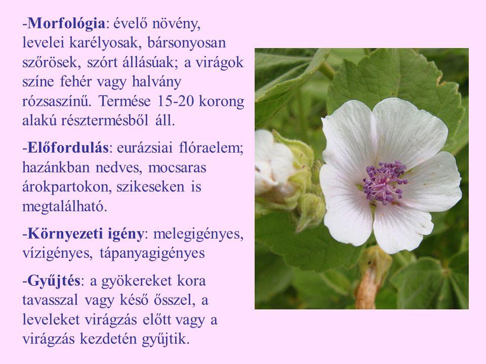 -Morfológia: évelő növény, levelei karélyosak, bársonyosan szőrösek, szórt állásúak; a virágok színe fehér vagy halvány rózsaszínű. Termése 15-20 koro