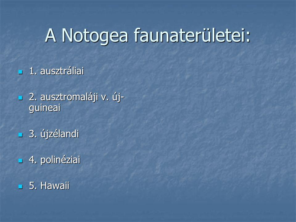 A Notogea faunaterületei: 1. ausztráliai 1. ausztráliai 2. ausztromaláji v. új- guineai 2. ausztromaláji v. új- guineai 3. újzélandi 3. újzélandi 4. p