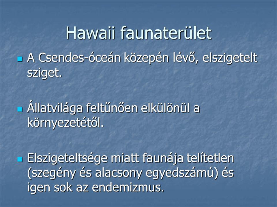 Hawaii faunaterület A Csendes-óceán közepén lévő, elszigetelt sziget. A Csendes-óceán közepén lévő, elszigetelt sziget. Állatvilága feltűnően elkülönü