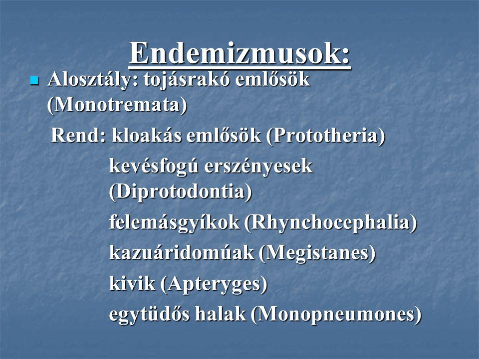 Endemizmusok: Alosztály: tojásrakó emlősök (Monotremata) Alosztály: tojásrakó emlősök (Monotremata) Rend: kloakás emlősök (Prototheria) Rend: kloakás