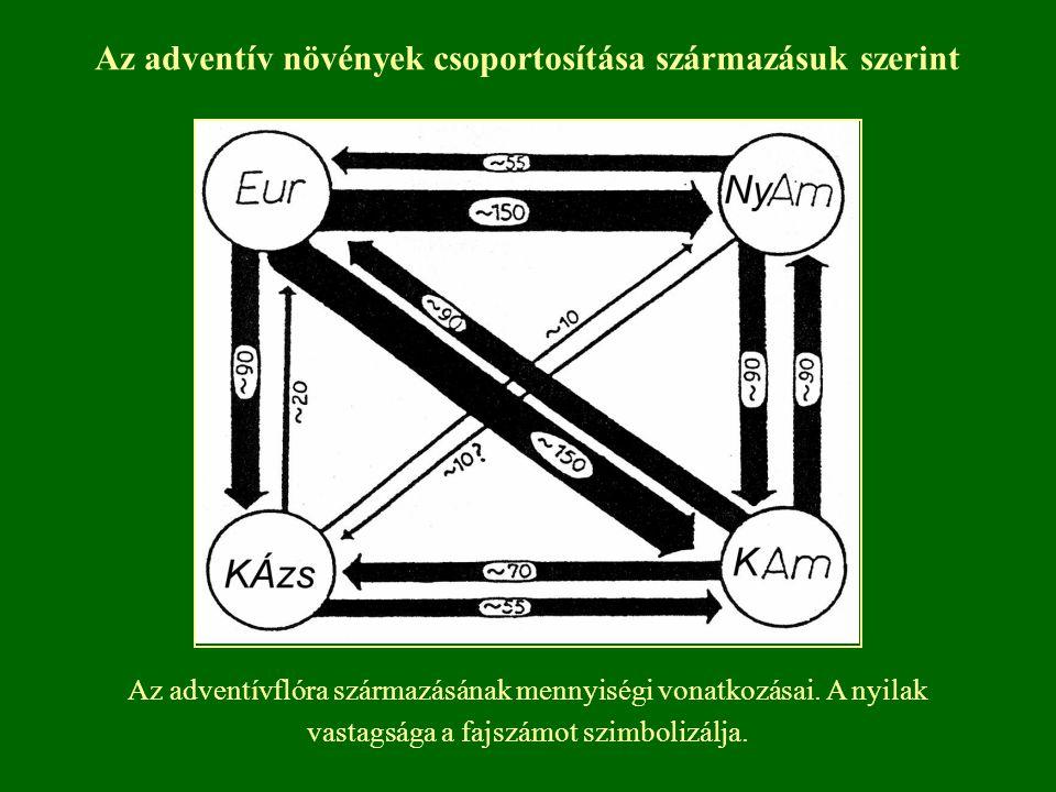 Az adventívflóra származásának mennyiségi vonatkozásai. A nyilak vastagsága a fajszámot szimbolizálja. Az adventív növények csoportosítása származásuk