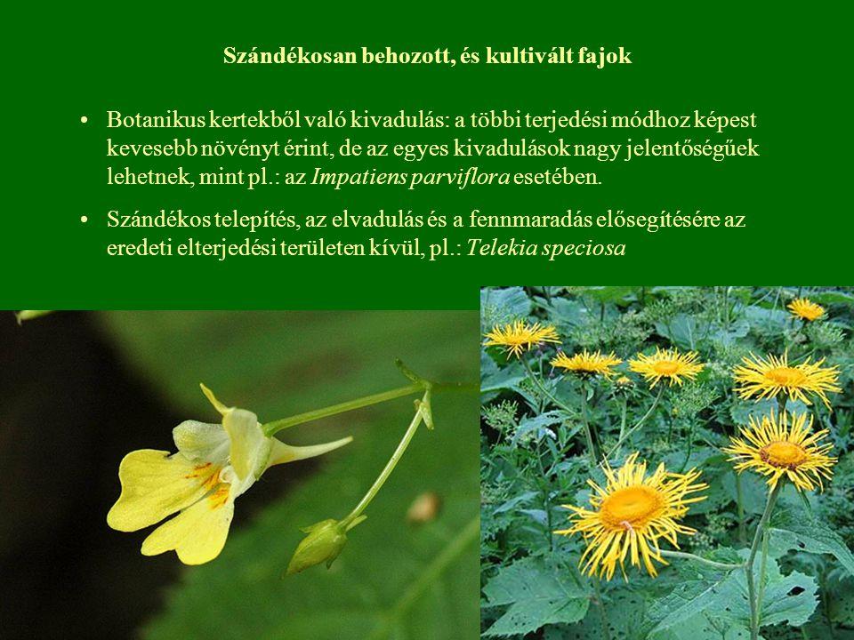 Szándékosan behozott, és kultivált fajok Botanikus kertekből való kivadulás: a többi terjedési módhoz képest kevesebb növényt érint, de az egyes kivad