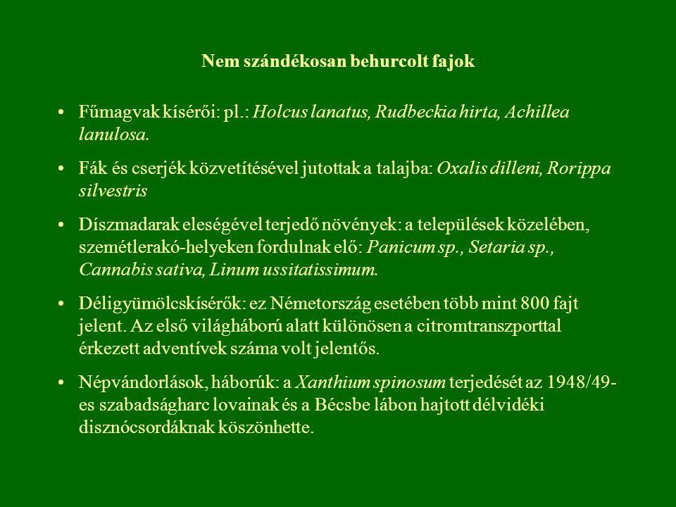 Nem szándékosan behurcolt fajok Fűmagvak kísérői: pl.: Holcus lanatus, Rudbeckia hirta, Achillea lanulosa. Fák és cserjék közvetítésével jutottak a ta
