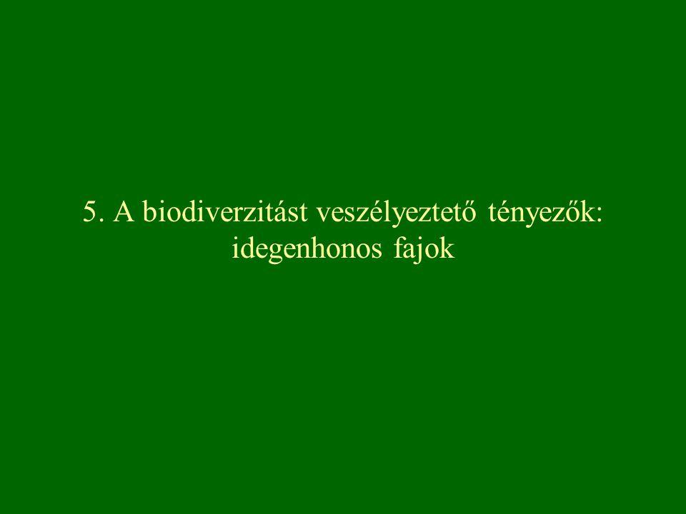 Sikeres invádorok jellemzői Hazai flórában invazív neofitonok között nagy a fészekvirágzatúak aránya elsősorban É-Amerika mérsékelt övi területeiről származó fajok válnak invazívá életformák alapján invazív fajok között nagyobb a fák, cserjék, geofitonok aránya, míg az egyéveseké kisebb nagyobb a vegetatív szaporodásra képes fajok aránya általuk preferált terület nedves, semleges vagy gyengén meszes, tápanyagban gazdag, napfényes