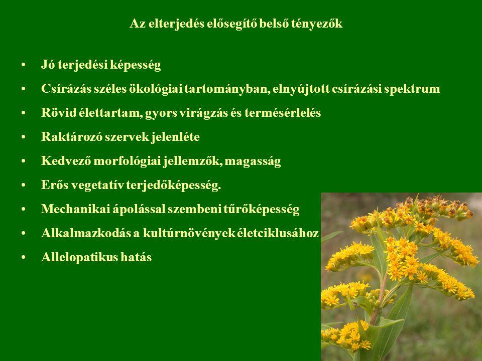 Jó terjedési képesség Csírázás széles ökológiai tartományban, elnyújtott csírázási spektrum Rövid élettartam, gyors virágzás és termésérlelés Raktároz