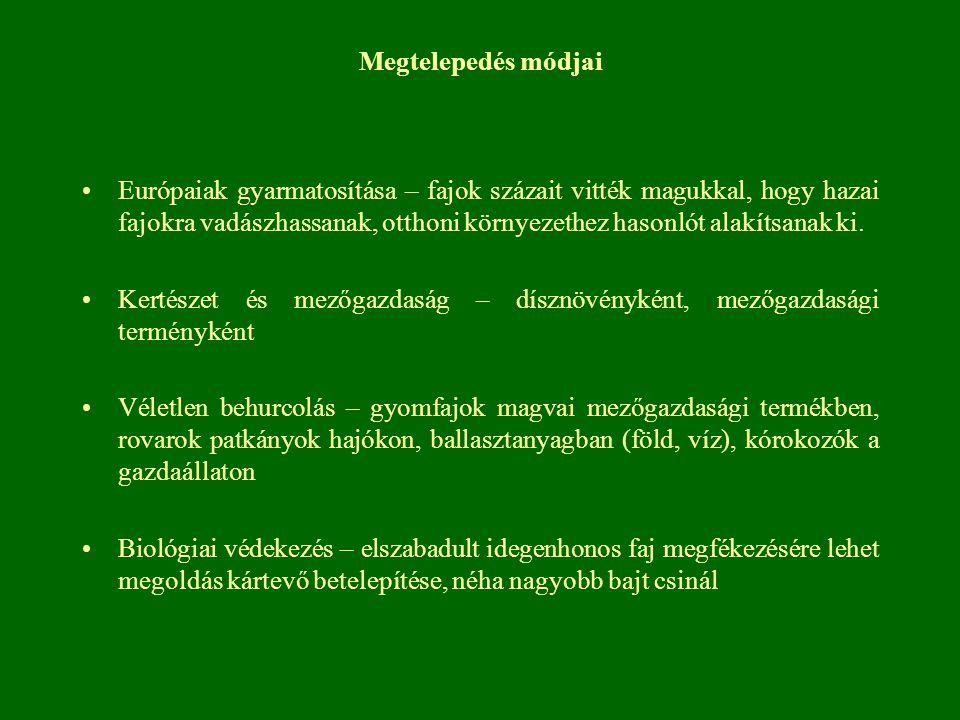 Ürömlevelű parlagfű (Ambrosia artemisiifolia) Gazdasági jelentősség Legveszélyesebb szántóföldi gyomnövény Lakosság 15-20 % allergiás Természetvédelmi jelentősség Természetközeli helyeken tartós jelenléte folyamatos zavarásra utal Parlagokon 1 évben domináns, 3-4 év után visszaszorul Természetvédelmi kezelés lehetősége Természetes szukcesszió során magától visszaszorul Irtása egészségügyi szempontok miatt indokolt Mechanikai kezelést virágzás előtt.