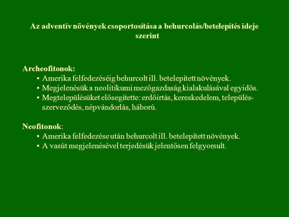Magas és kanadai aranyvessző (Solidago gigantea, Solidago canadensis) É-Amerikai eredetű dísznövényként behurcolt fajok Magyarországi megtelepedése 1848 Első tömeges előfordulása 1865 Csallóköz, 1873 Csepel-sziget 1880 években Dunántúl több pontjáról jelezték