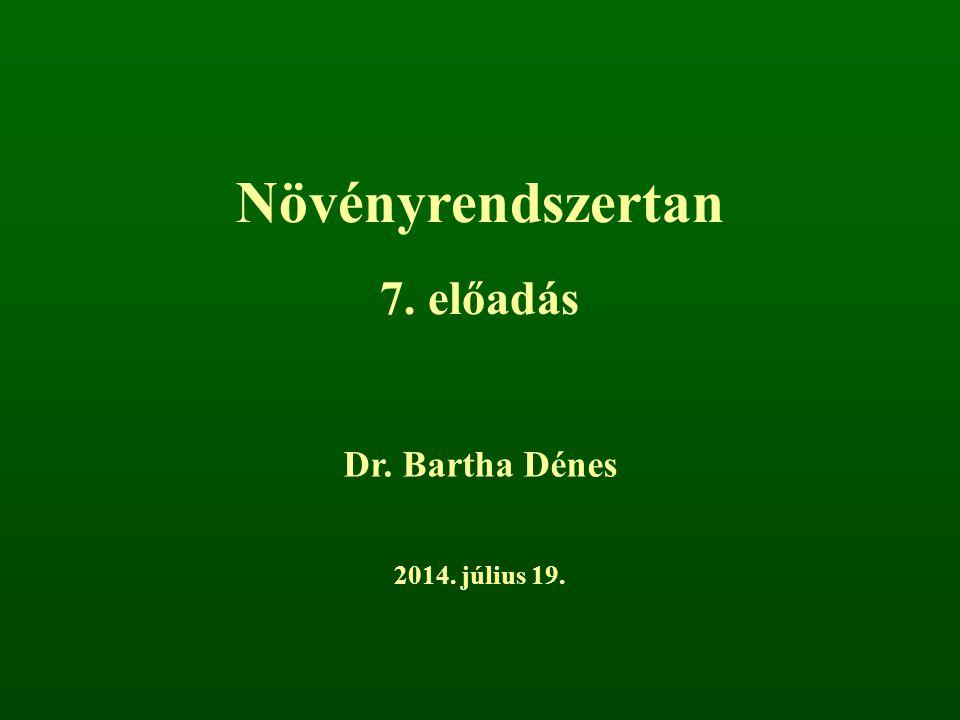 Növényrendszertan 7. előadás Dr. Bartha Dénes 2014. július 19.