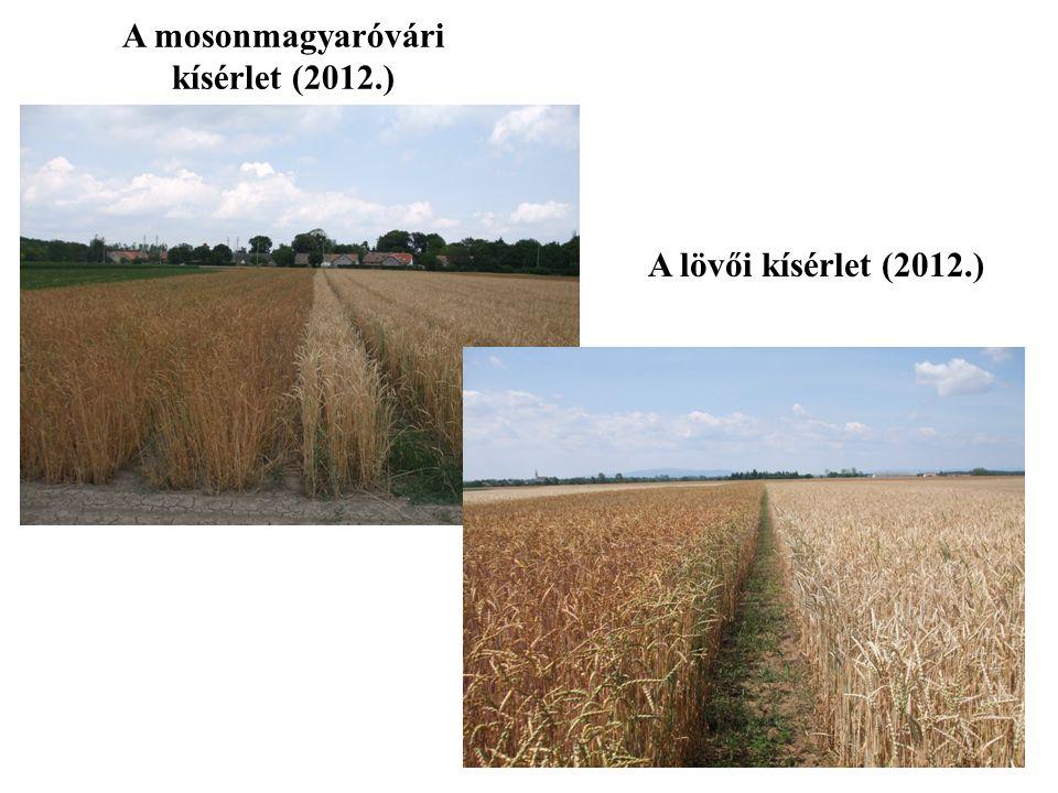 A lövői kísérlet (2012.) A mosonmagyaróvári kísérlet (2012.)