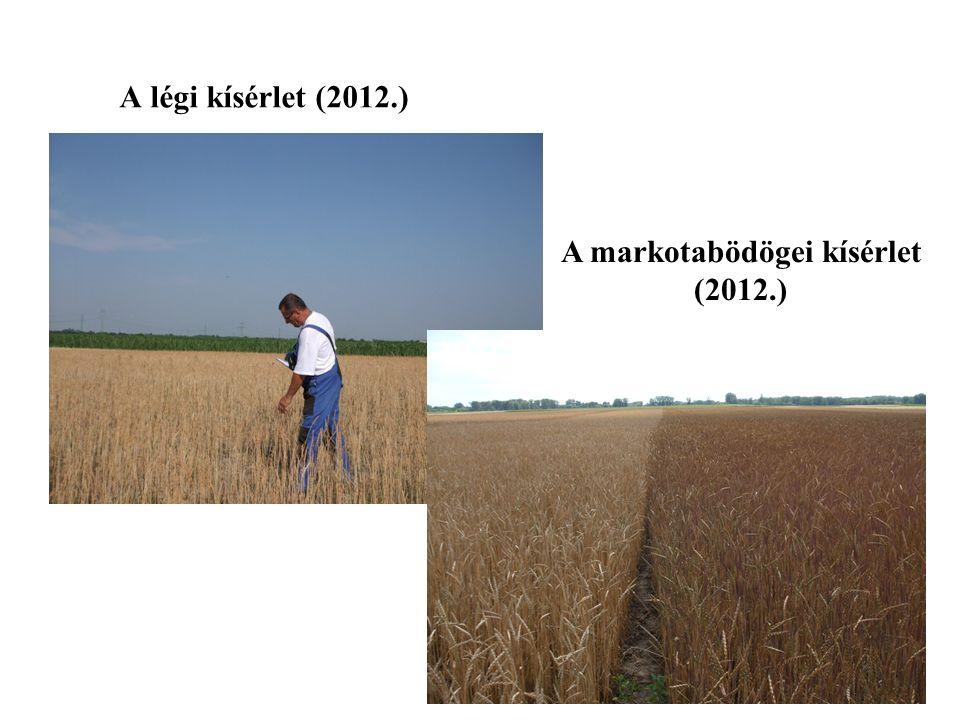 A légi kísérlet (2012.) A markotabödögei kísérlet (2012.)