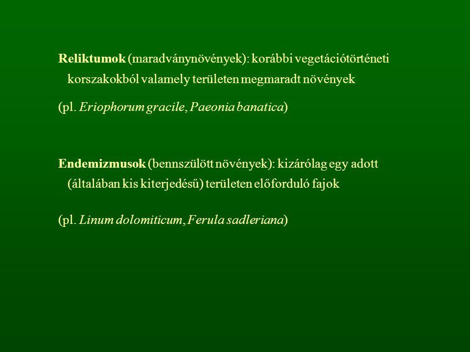 rendkívül változatos szaporodás (ivaros és ivartalan) -ivartalan szaporodás 1.zoospórák (rajzóspórák) 2.konidiospórák (konidiumok) - exogén lefűződés 3.oidiospórák (oidiumok) - hifafeldarabolódás 4.sarjsejtek 5.klamidospórák (kitartó spórák) - vastag fal -ivaros szaporodás 1.izogámia 2.anizogámia 3.oogámia ivaros folyamatok: plazmogámia és kariogámia időben elkülönül nemzedékváltakozás (haploid, diploid szakaszok) rendszerezésük: a teleptest, az ivaros szaporodási forma ill.