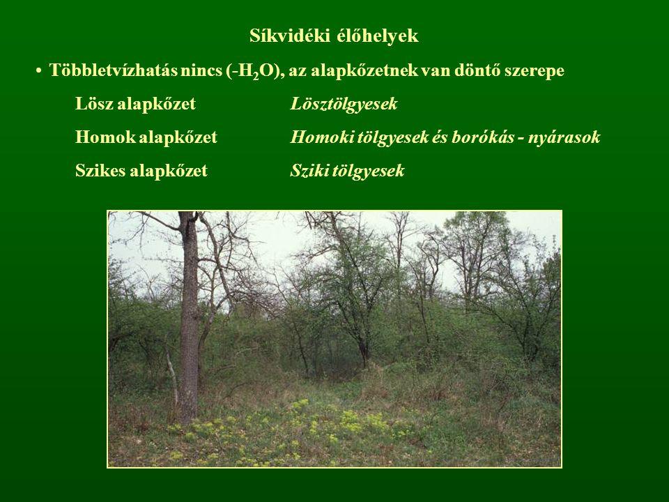 Síkvidéki élőhelyek Többletvízhatás nincs (-H 2 O), az alapkőzetnek van döntő szerepe Lösz alapkőzetLösztölgyesek Homok alapkőzetHomoki tölgyesek és b