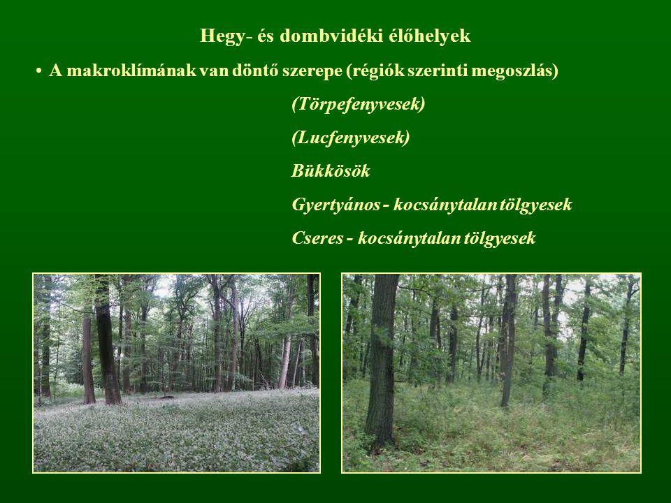 Hegy- és dombvidéki élőhelyek A makroklímának van döntő szerepe (régiók szerinti megoszlás) (Törpefenyvesek) (Lucfenyvesek) Bükkösök Gyertyános - kocs