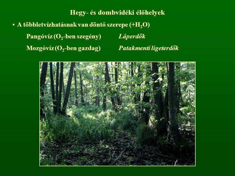 Hegy- és dombvidéki élőhelyek A többletvízhatásnak van döntő szerepe (+H 2 O) Pangóvíz (O 2 -ben szegény)Láperdők Mozgóvíz (O 2 -ben gazdag)Patakmenti