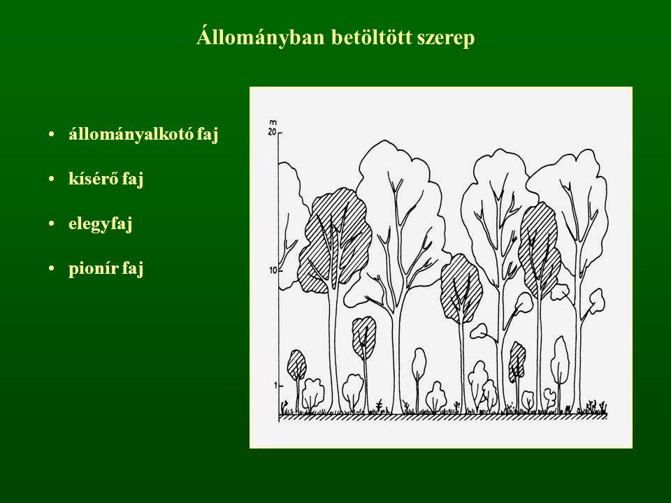 Állományban betöltött szerep állományalkotó faj kísérő faj elegyfaj pionír faj
