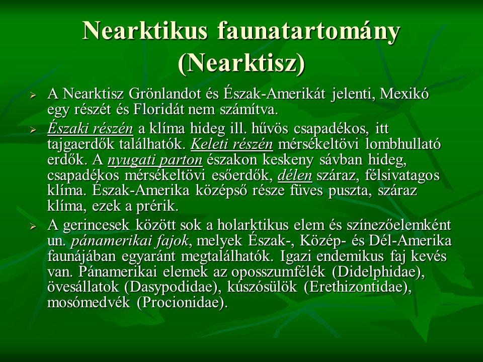 Nearktikus faunatartomány (Nearktisz)  A Nearktisz Grönlandot és Észak-Amerikát jelenti, Mexikó egy részét és Floridát nem számítva.  Északi részén