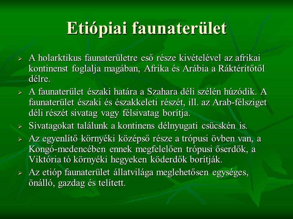 Etiópiai faunaterület  A holarktikus faunaterületre eső része kivételével az afrikai kontinenst foglalja magában, Afrika és Arábia a Ráktérítőtől dél