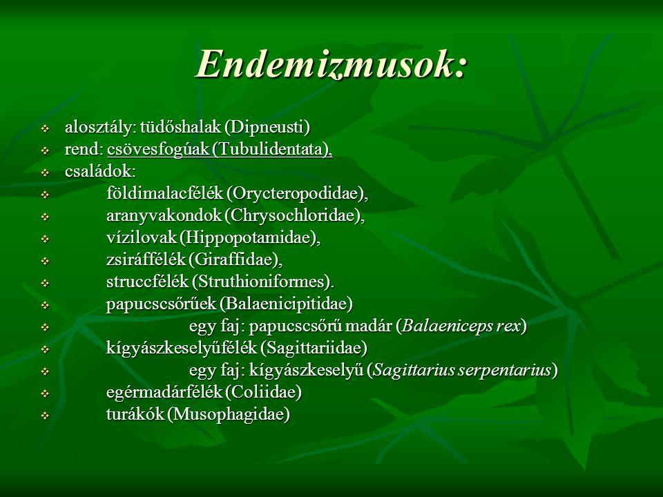 Endemizmusok:  alosztály: tüdőshalak (Dipneusti)  rend: csövesfogúak (Tubulidentata),  családok:  földimalacfélék (Orycteropodidae),  aranyvakond