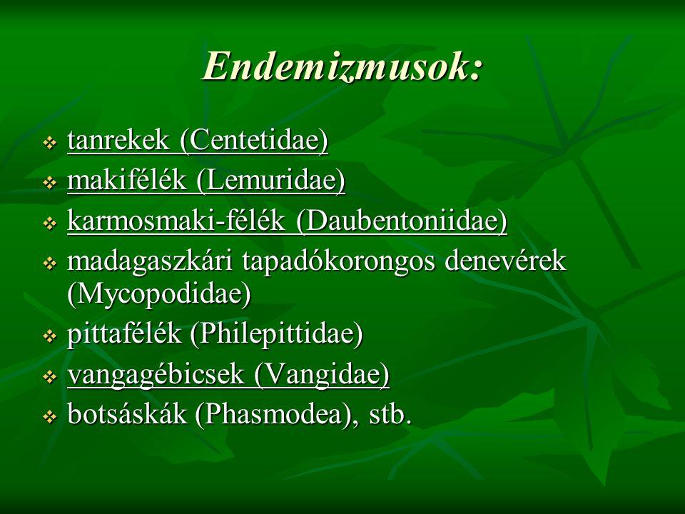 Endemizmusok:  tanrekek (Centetidae)  makifélék (Lemuridae)  karmosmaki-félék (Daubentoniidae)  madagaszkári tapadókorongos denevérek (Mycopodidae