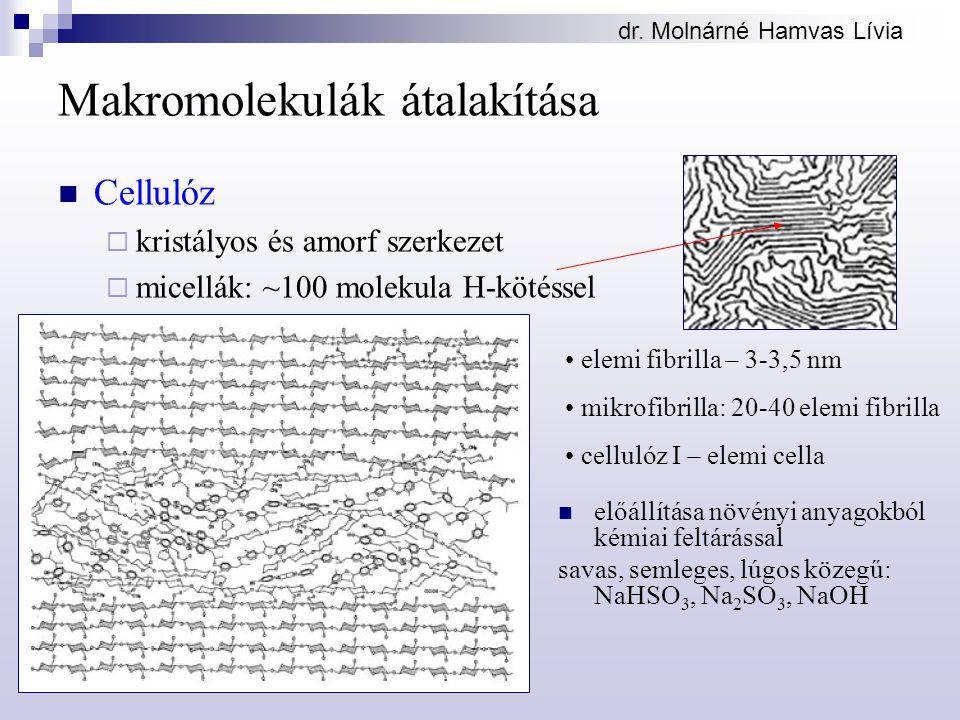 dr. Molnárné Hamvas Lívia Makromolekulák átalakítása Cellulóz  kristályos és amorf szerkezet  micellák: ~100 molekula H-kötéssel elemi fibrilla – 3-