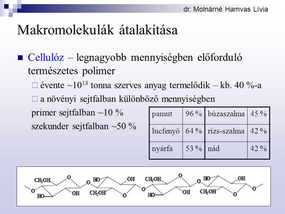 dr. Molnárné Hamvas Lívia Makromolekulák átalakítása Cellulóz – legnagyobb mennyiségben előforduló természetes polimer  évente ~10 18 tonna szerves a