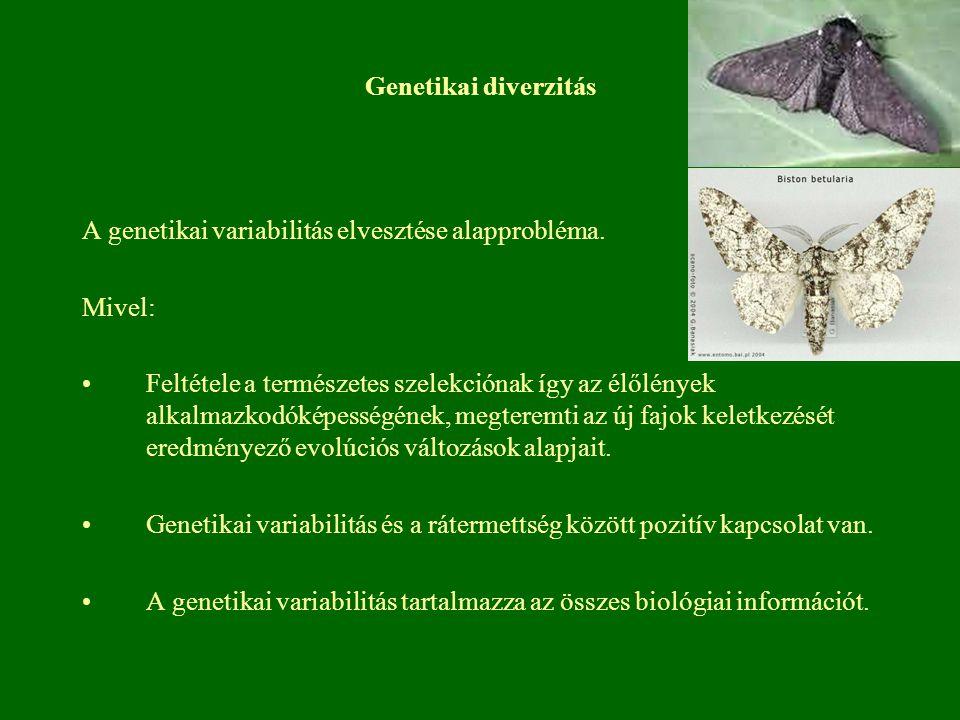A genetikai variabilitás elvesztése alapprobléma. Mivel: Feltétele a természetes szelekciónak így az élőlények alkalmazkodóképességének, megteremti az