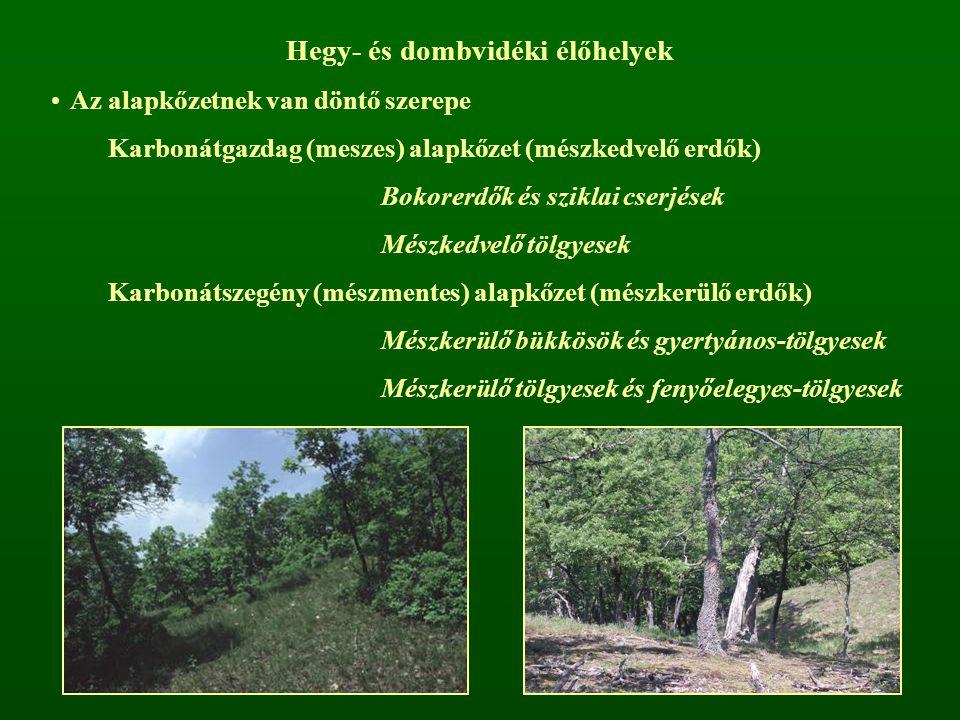Hegy- és dombvidéki élőhelyek Az alapkőzetnek van döntő szerepe Karbonátgazdag (meszes) alapkőzet (mészkedvelő erdők) Bokorerdők és sziklai cserjések