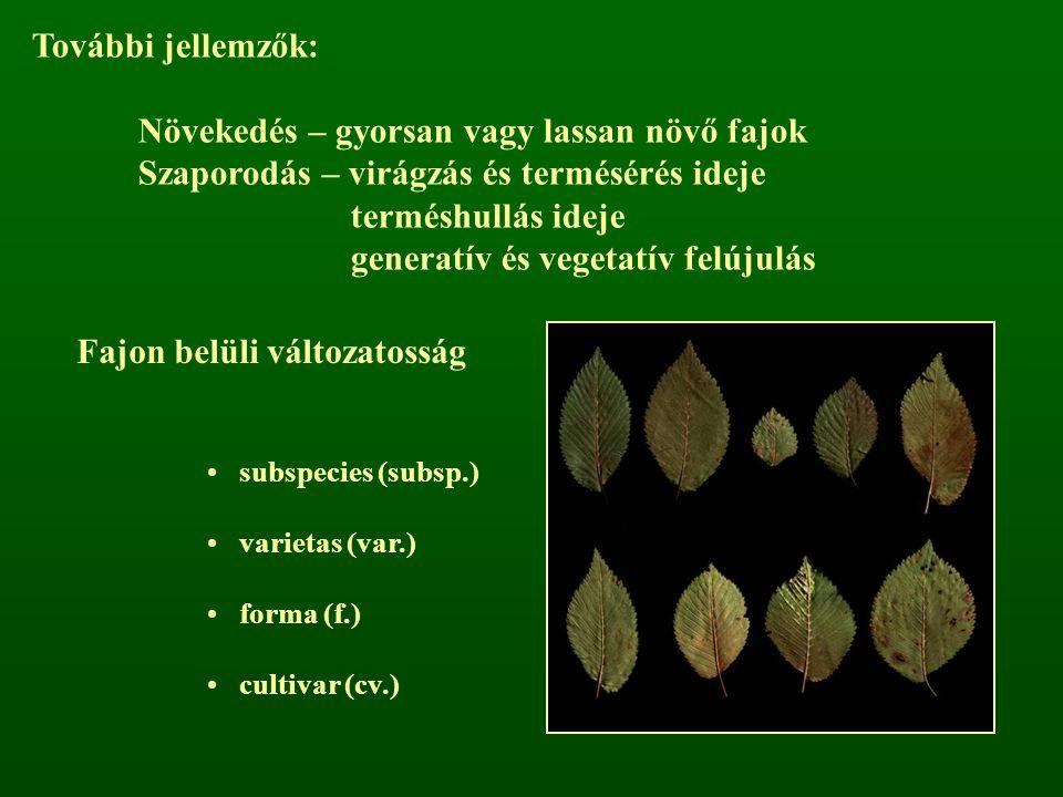 Fajon belüli változatosság subspecies (subsp.) varietas (var.) forma (f.) cultivar (cv.) További jellemzők: Növekedés – gyorsan vagy lassan növő fajok