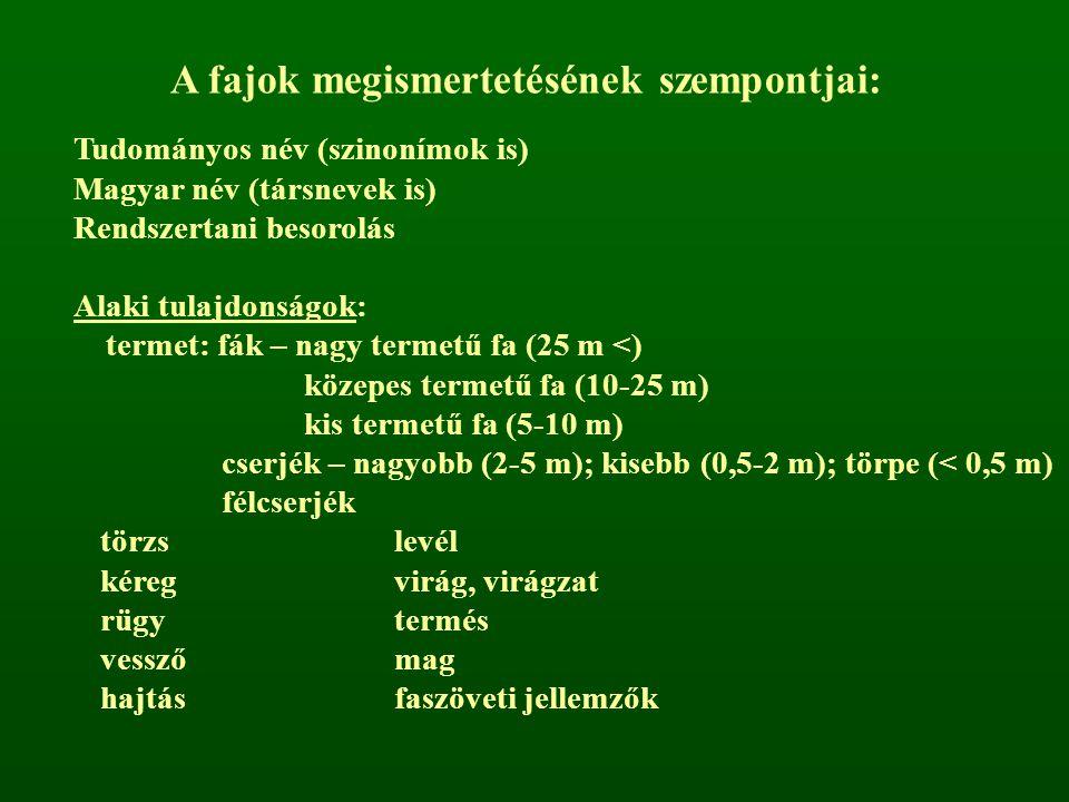A fajok megismertetésének szempontjai: Tudományos név (szinonímok is) Magyar név (társnevek is) Rendszertani besorolás Alaki tulajdonságok: termet: fá
