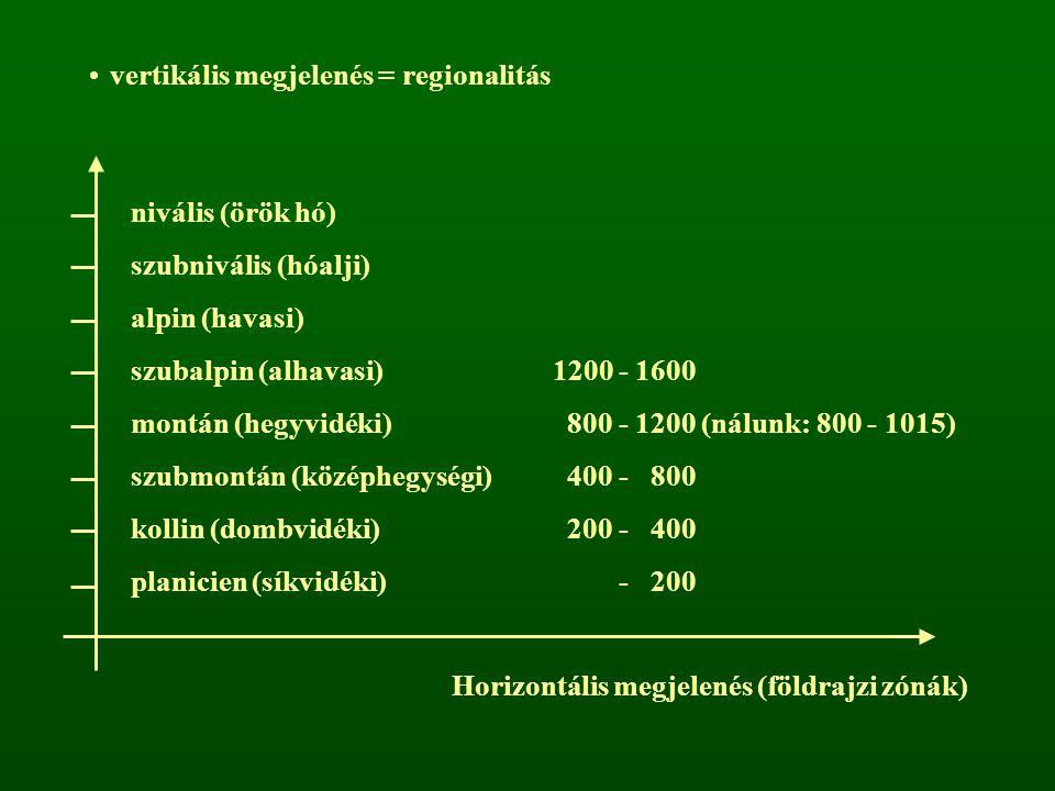 vertikális megjelenés = regionalitás nivális (örök hó) szubnivális (hóalji) alpin (havasi) szubalpin (alhavasi)1200 - 1600 montán (hegyvidéki) 800 - 1