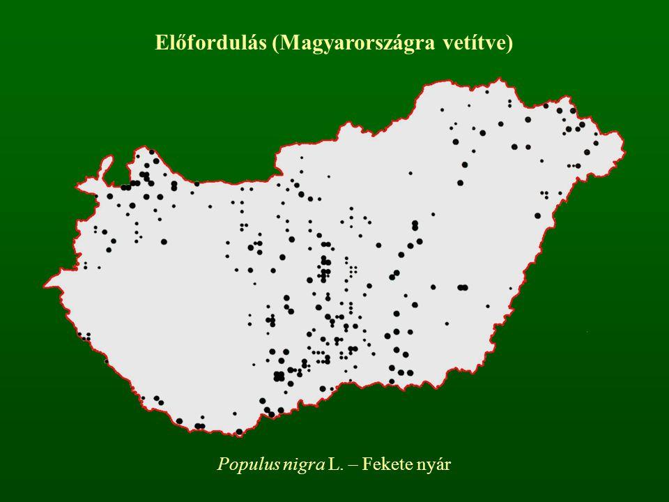 Állományban betöltött szerep állományalkotó faj kísérő faj elegyfaj pionír faj Díszítőérték Ritkaság Védettség Veszélyeztetettség Invazivitás Egyéb ismérvek