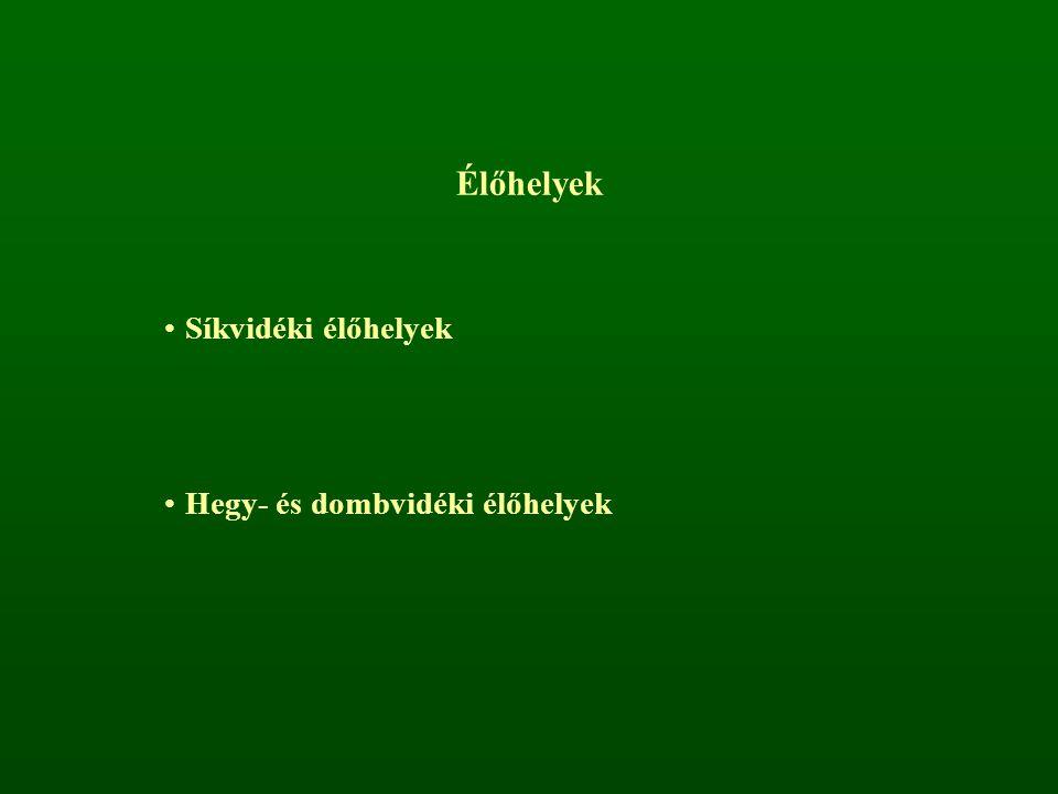 Síkvidéki élőhelyek Többletvízhatás van (+H 2 O) Pangóvíz (O 2 -ben szegény)Láperdők Mozgóvíz (O 2 -ben gazdag)Ártéri ligeterdők Bokorfüzesek Puhafás (fűz-nyár) ligeterdők Keményfás (tölgy-kőris-szil) ligeterdők