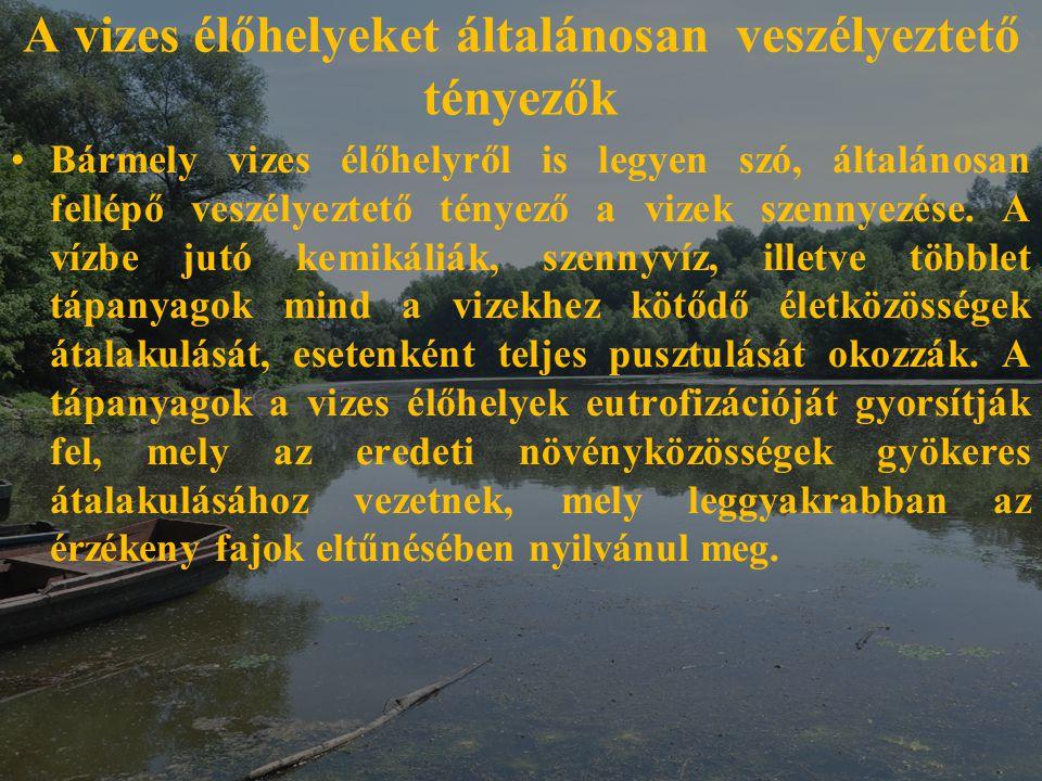 A vizes élőhelyeket általánosan veszélyeztető tényezők Bármely vizes élőhelyről is legyen szó, általánosan fellépő veszélyeztető tényező a vizek szenn