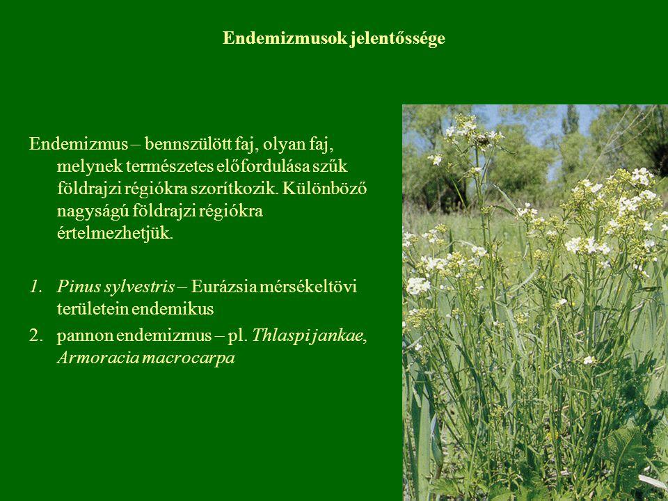 Endemizmusok jelentőssége Endemizmus – bennszülött faj, olyan faj, melynek természetes előfordulása szűk földrajzi régiókra szorítkozik. Különböző nag