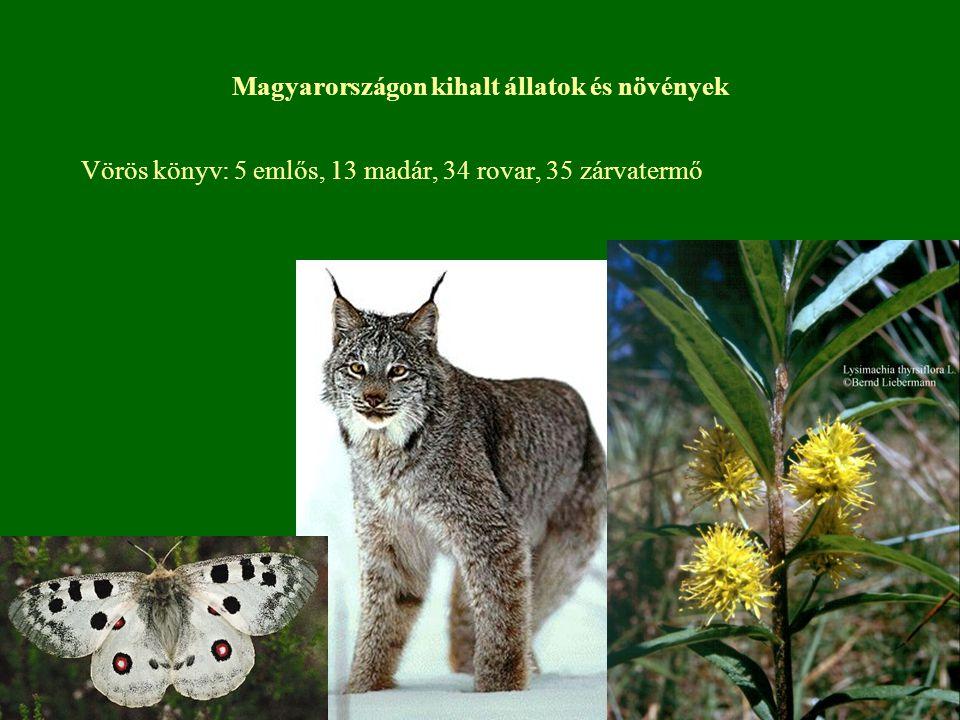 Magyarországon kihalt állatok és növények Vörös könyv: 5 emlős, 13 madár, 34 rovar, 35 zárvatermő