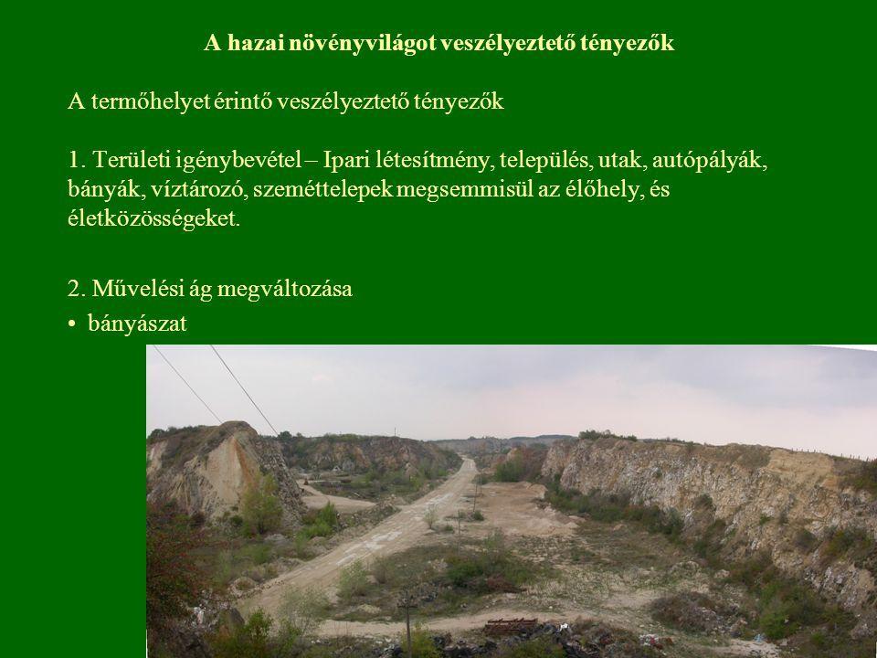 A hazai növényvilágot veszélyeztető tényezők A termőhelyet érintő veszélyeztető tényezők 1. Területi igénybevétel – Ipari létesítmény, település, utak