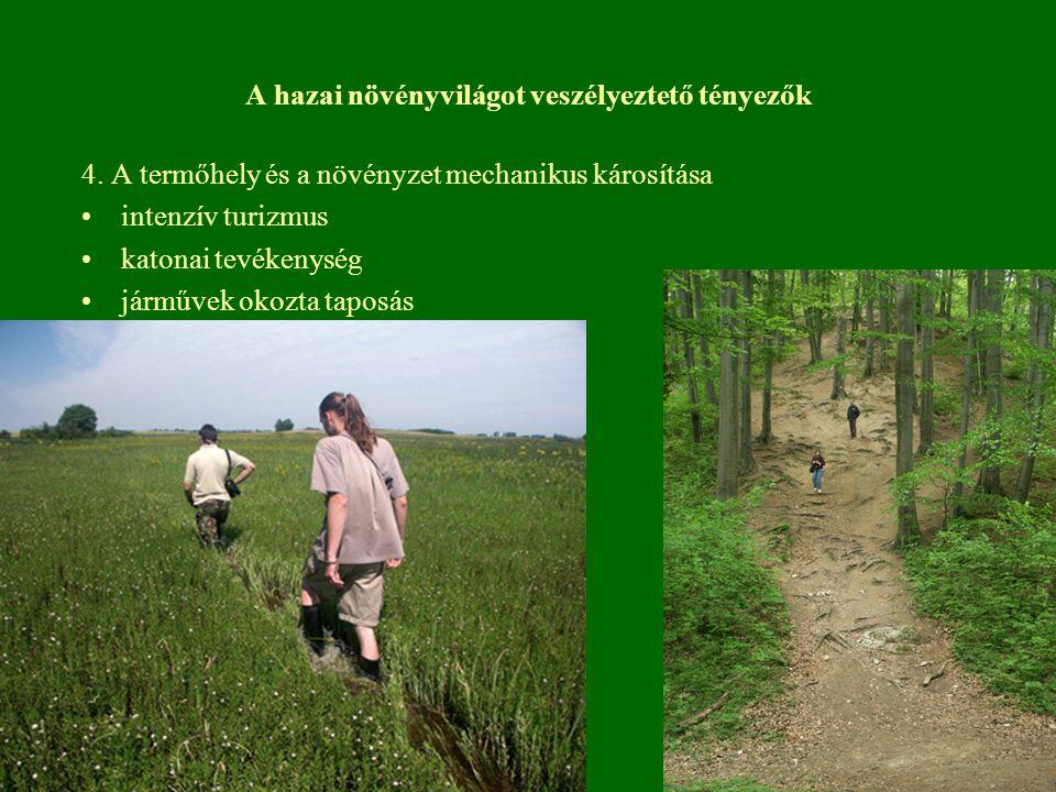 A hazai növényvilágot veszélyeztető tényezők 4. A termőhely és a növényzet mechanikus károsítása intenzív turizmus katonai tevékenység járművek okozta