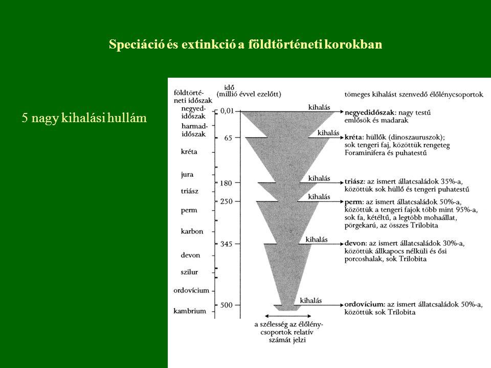 A hazai növényvilágot veszélyeztető tényezők A termőhelyet érintő veszélyeztető tényezők 1.