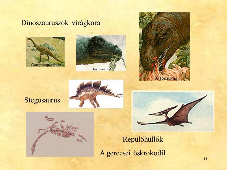 11 Dinoszauruszok virágkora Repülőhüllők A gerecsei őskrokodil Stegosaurus