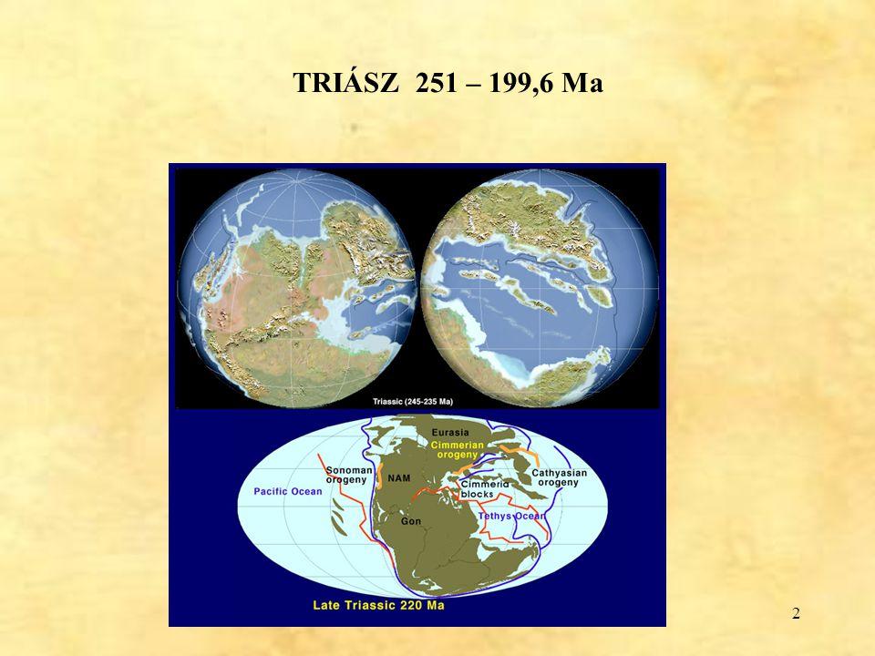3 Hármas osztatúság: GERMÁN TRIÁSZ – (szárazföldi-beltengeri), teljes üledékciklus KEUPER - szárazföldi lagunáris MUSCHELKALK (kagylósmészkő) – sekélytengeri BUNTSANDSTEIN – tarkahomokkő ALPI TRIÁSZ – uralkodóan nyílttengeri vastag mészkő/dolomit (Dachsteini Mészkő Formáció, Fődolomit Formáció)