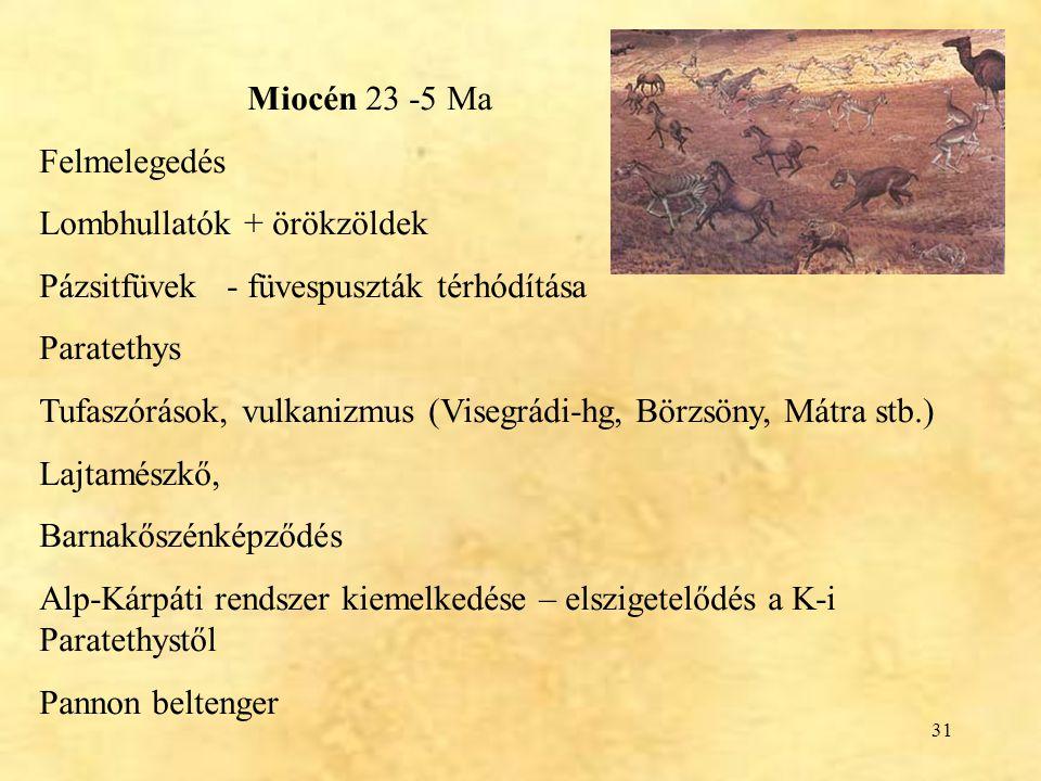 31 Miocén 23 -5 Ma Felmelegedés Lombhullatók + örökzöldek Pázsitfüvek - füvespuszták térhódítása Paratethys Tufaszórások, vulkanizmus (Visegrádi-hg, B