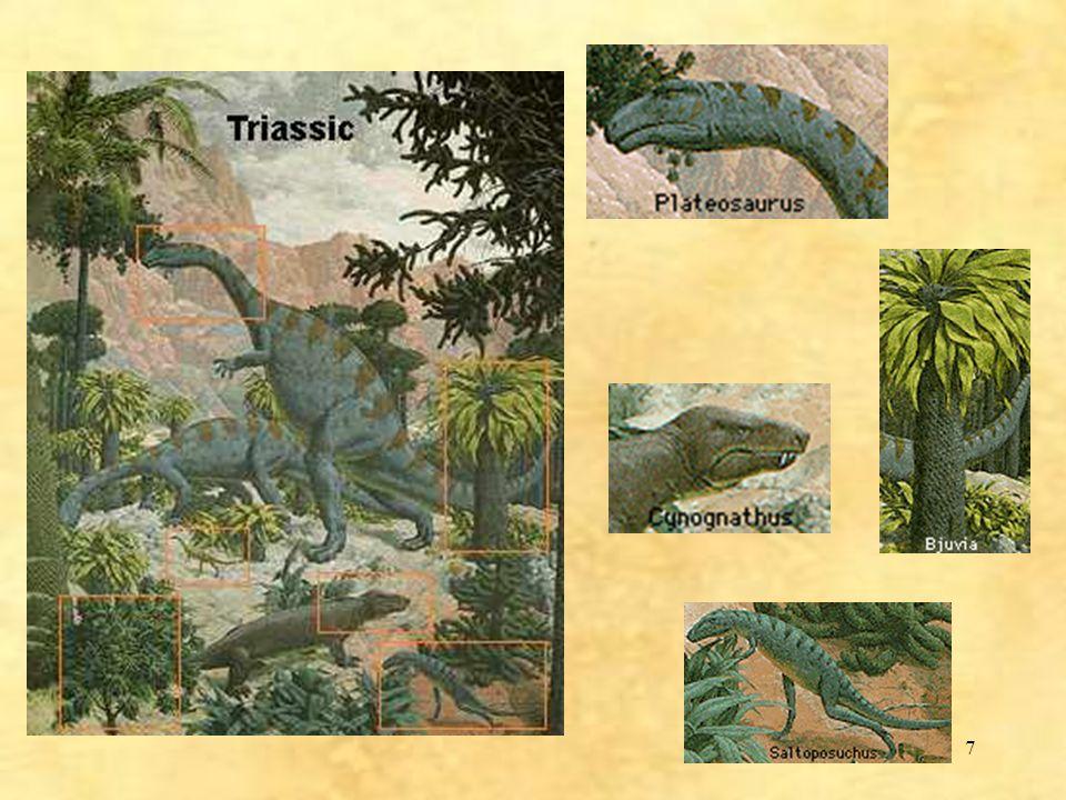 38 Megatherium 2,000,000 - 11,000 évvel ezelőttig élt