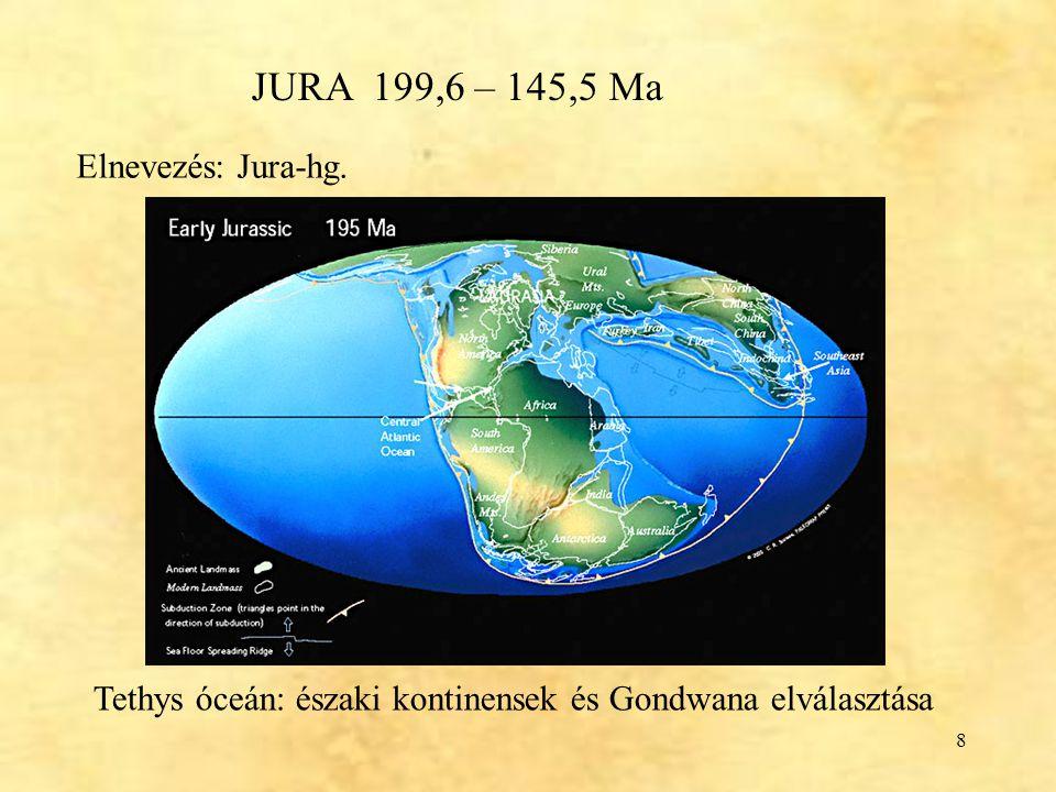 9 Jura Hegységszerkezeti szempontból nyugodt Tengeri időszak Pangea szétesése folytatódik Tethys kiszélesedik (Gondwana – É-i kontinensek), a mai szárazföldek nagy része tenger alatt Elkezd kinyílni az Atlanti-óceán Sok szárazföldi híd: kozmopolita dinoszauruszok Meleg, kiegyenlített éghajlat, nincs jégsapka