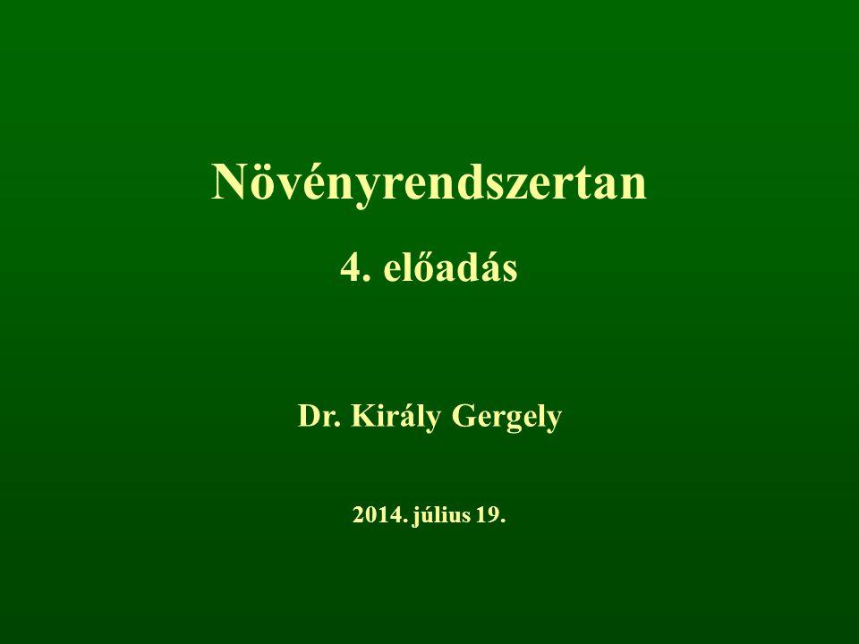 Növényrendszertan 4. előadás Dr. Király Gergely 2014. július 19.