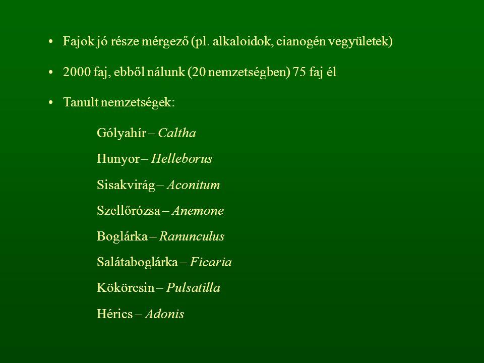 Fajok jó része mérgező (pl. alkaloidok, cianogén vegyületek) 2000 faj, ebből nálunk (20 nemzetségben) 75 faj él Tanult nemzetségek: Gólyahír – Caltha