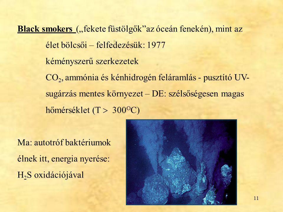 """11 Black smokers (""""fekete füstölgők""""az óceán fenekén), mint az élet bölcsői – felfedezésük: 1977 kéményszerű szerkezetek CO 2, ammónia és kénhidrogén"""