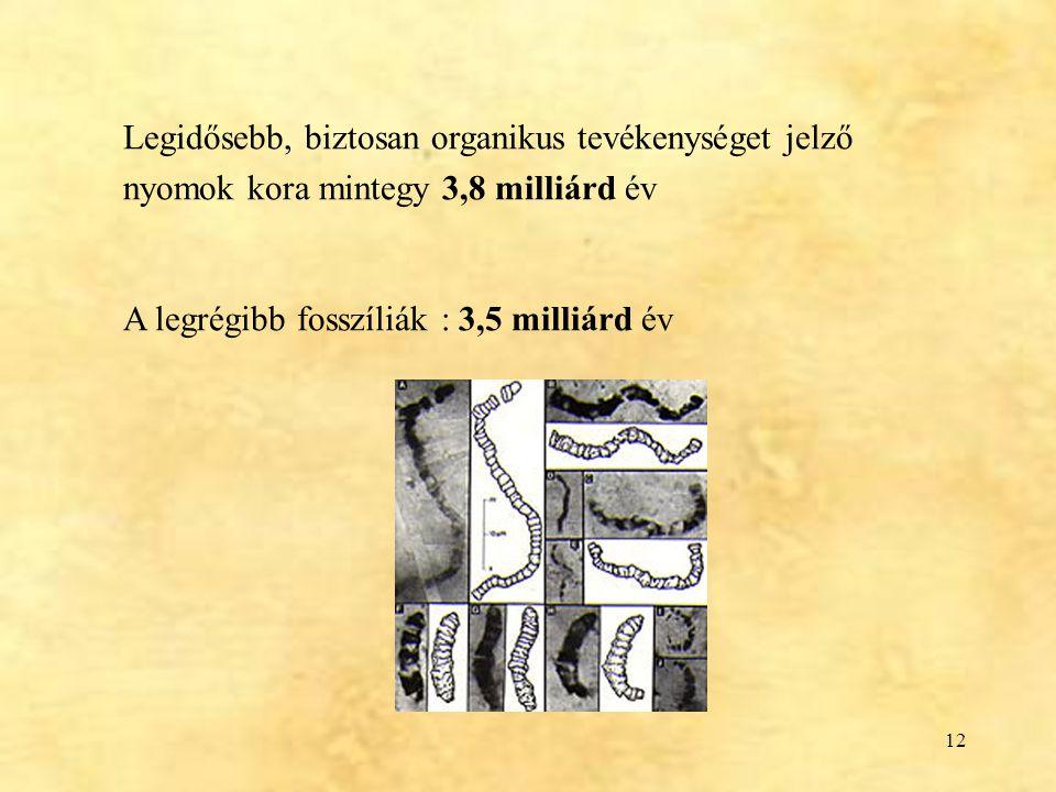 12 Legidősebb, biztosan organikus tevékenységet jelző nyomok kora mintegy 3,8 milliárd év A legrégibb fosszíliák : 3,5 milliárd év