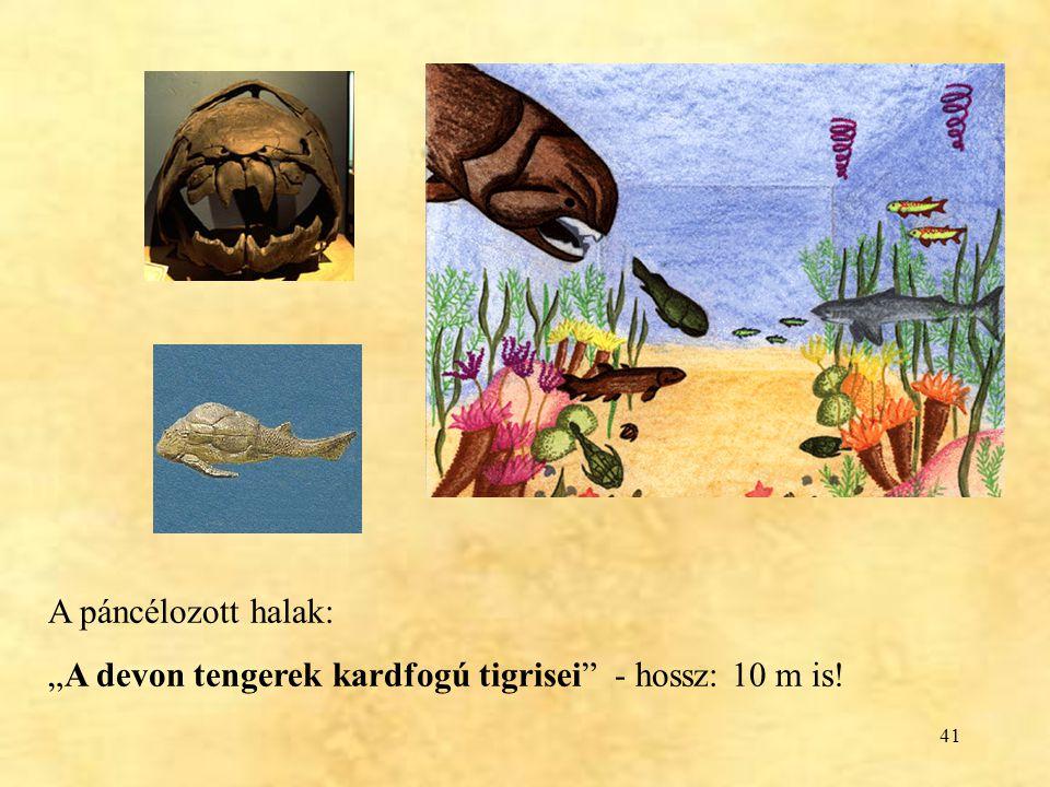 """41 A páncélozott halak: """"A devon tengerek kardfogú tigrisei"""" - hossz: 10 m is!"""