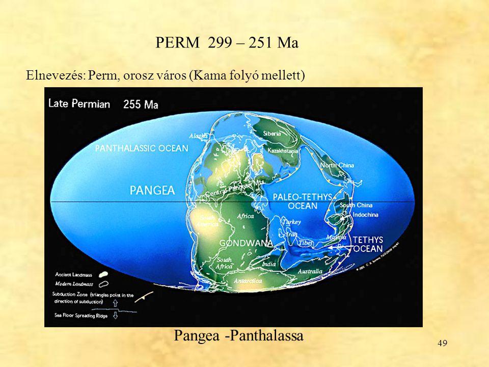 49 PERM 299 – 251 Ma Pangea -Panthalassa Elnevezés: Perm, orosz város (Kama folyó mellett)